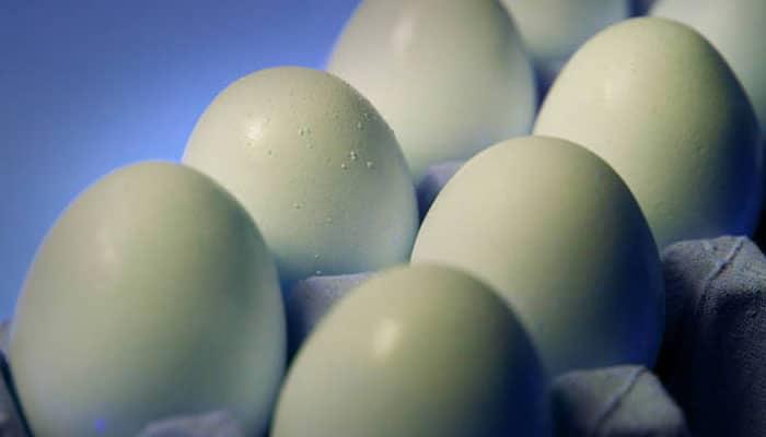 soñar con huevos blancos