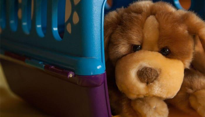 soñar con perro de juguete