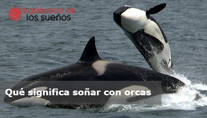 soñar con orcas
