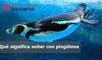 Soñar con pingüinos