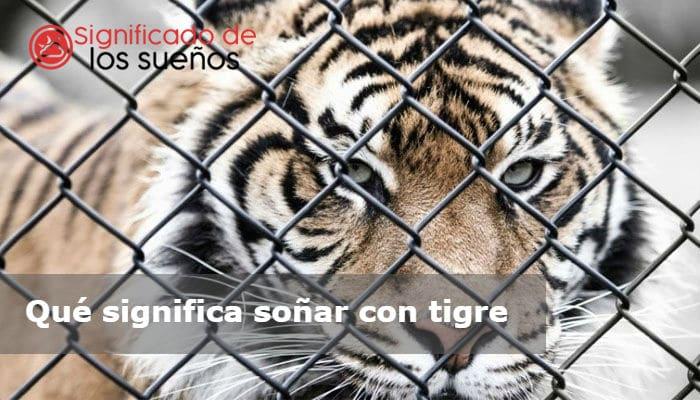 soñar con tigre
