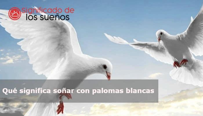 Qué Significa Soñar Con Palomas Blancas
