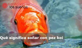 soñar con pez koi